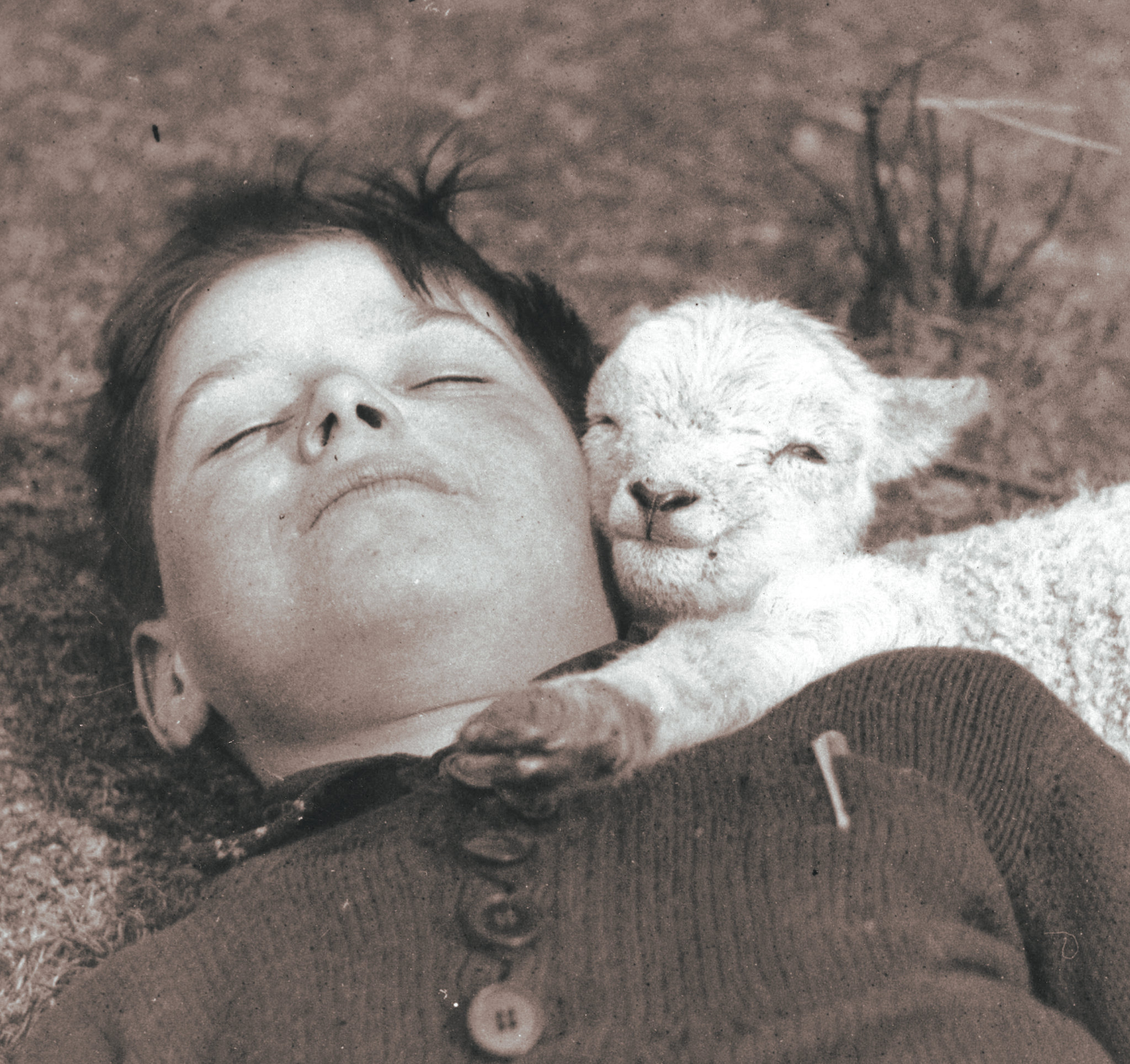 Boy Lamb Ogmore Vale 16th of March 1940+.jpg