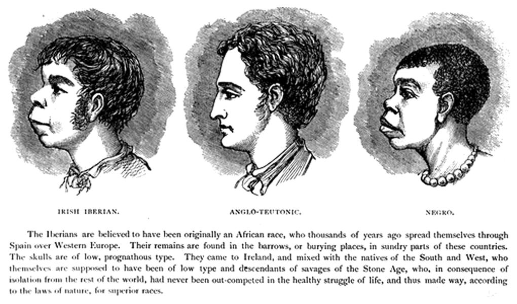 Scientific_racism_irish - Copy.jpg