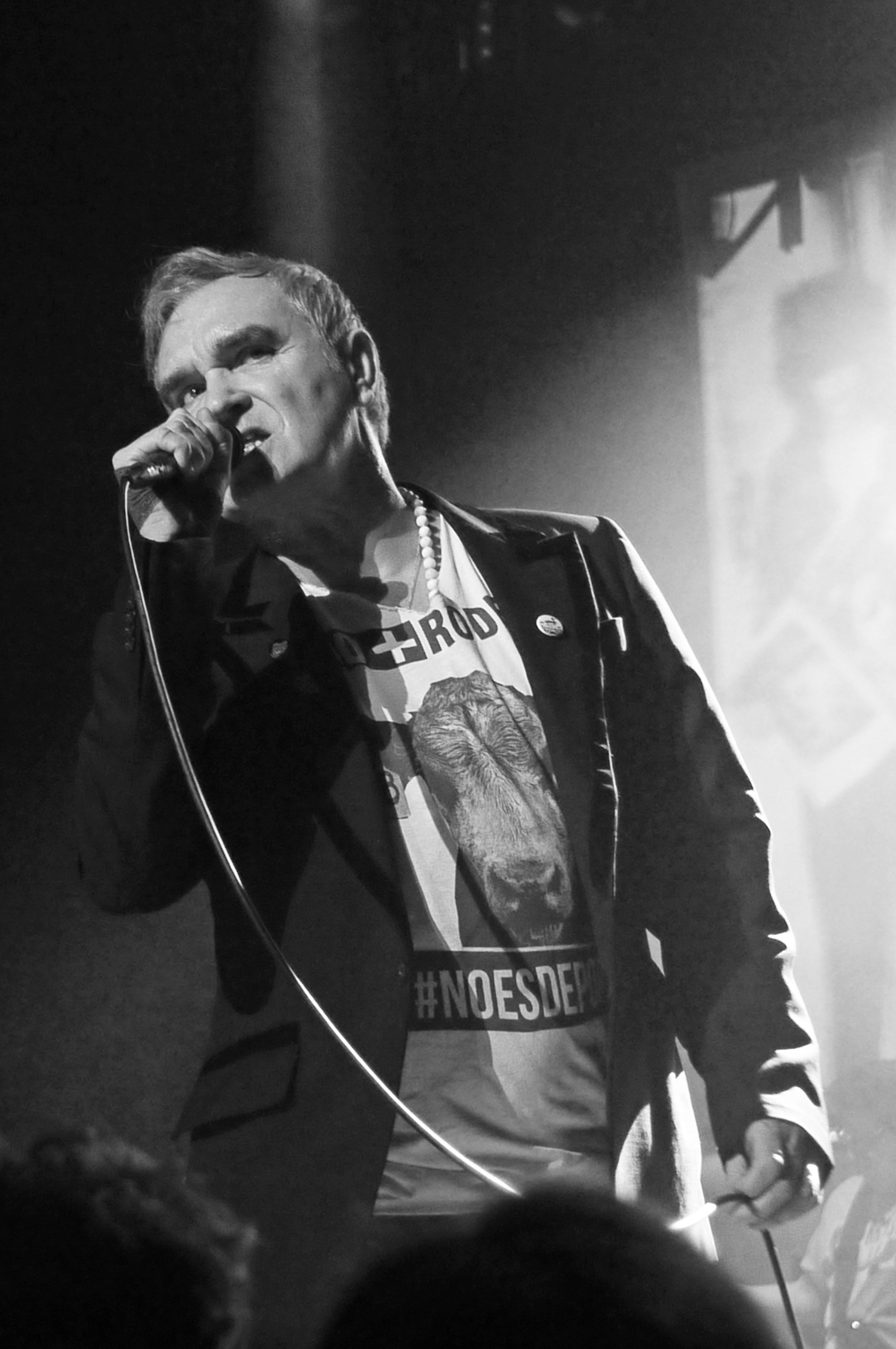 Morrissey_by_Paul_Marques-1.jpg