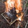 burning-bee-frame-bonfire-outdoor-close-up-176454971.jpeg