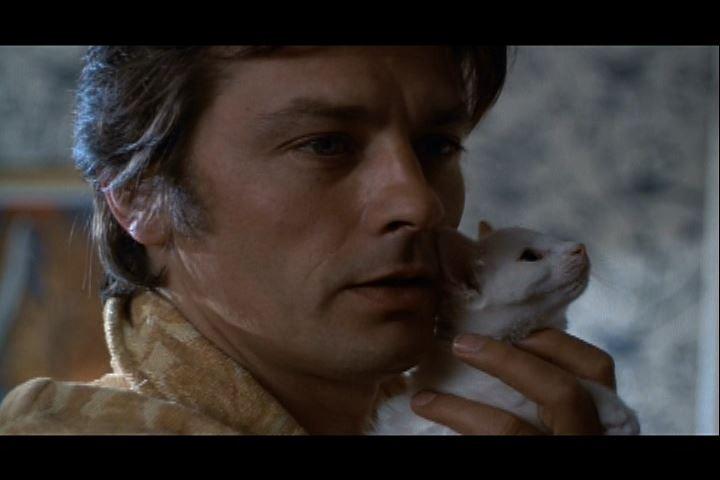 Alain Delon with Kitten.jpg